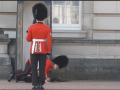 soldat garda regina