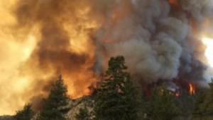 incendiile-de-vegetatie-devin-un-pericol-pe-vreme-torida-ce-recomanda-pompierii