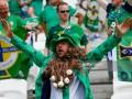 fan irlandez - euro 2016